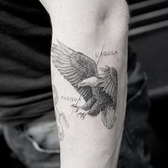 K And His Exquisite Fine Line Tattoos - Royal eagle tattoo. Fine line tattoos are little accessories to your skin and Mr. Hand Tattoos, Finger Tattoos, Eagle Tattoos, Forearm Tattoos, New Tattoos, Body Art Tattoos, Small Tattoos, Tattoos For Guys, Sleeve Tattoos