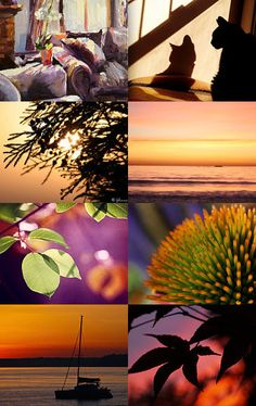 Sunset at the Beach by Linda Voth on Etsy--Pinned with TreasuryPin.com