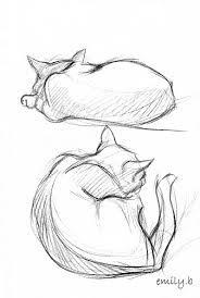 drawing sleeping cat - Google Search