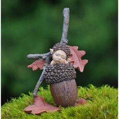A cute little Baby wrapped in an acorn.