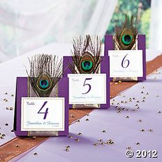 Peacock Wedding Table Numbers I love these!!! I'm making these for my wedding for sure!!! (If I remember, lol)