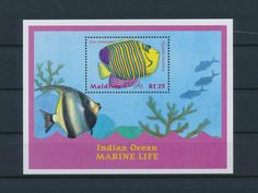 LE85500 Maldives  spiny butterflyfish sealife good sheet MNH