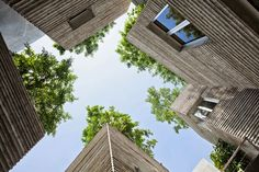 we are the figuettes House for Trees Vo trong Nghia Architects