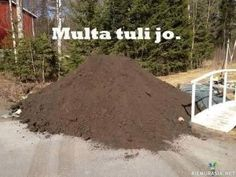 Multa tuli jo Finland, Sarcasm, Cool Pictures, Jokes, Lol, Sayings, Pastor, Humor, Husky Jokes