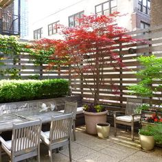 fence idea for sideyard by little trees, but only half the height