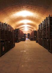 Welcome to the colourfull world of Mexican wines and Mexican wineries.