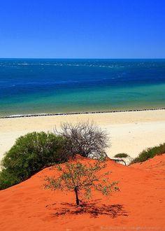 Red sand and sea - Francois Perron National Park - Western Australia - Australia 2