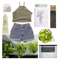 """juniper"" by erynashley ❤ liked on Polyvore featuring interior, interiors, interior design, home, home decor, interior decorating, My Mum Made It, Levi's, Crabtree & Evelyn and Jayson Home"