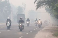 Indonesia has enough resources of its own and does not need Singapore's help to fight the haze fornow, Indonesian officials told a delegation from the Ministry of the Environment and Water Resources (MEWR) in Jakarta on Thursday (Oct 1).