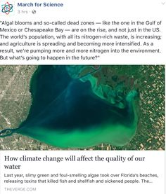 """""""Algal blooms and so-called dead zones — like the one in the Gulf of Mexico or Chesapeake Bay — are on the rise, and not just in the US. The world's population, with all its nitrogen-rich waste, is increasing; and agriculture is spreading and becoming more intensified. As a result, we're pumping more and more nitrogen into the environment. But what's going to happen in the future?"""""""