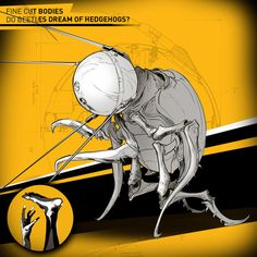 Fine Cut Bodies - Beetle In The Bandoneon