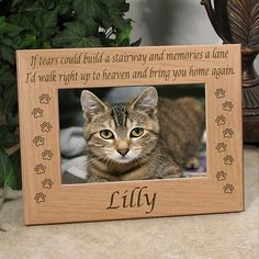 All Paws Memorial Cat Picture Frame