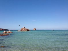 Isla Espíritu Santo: Snorkel with sea lions!