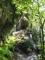 Rinnende Mauer - Schluchtweg Plants, Hiking Trails, National Forest, Alps, Plant, Planets