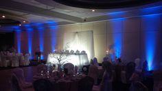 Americana in blue Ted, Reception, Weddings, Concert, Blue, Wedding, Concerts, Receptions, Marriage