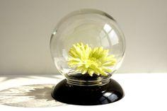 Vintage Glass Globe Flower Aquarium / Terrarium  - Bring your favorite flowers inside!