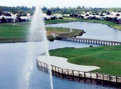 Waterford Golf Course - Venice - FL
