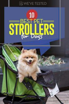 36 Best Dog stroller images in 2017 | Dog stroller, Pet