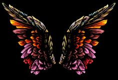 Angel Wings Pictures | WINGS Wallpaper - Download The Free PINK & BLACK ANGEL WINGS Wallpaper ...