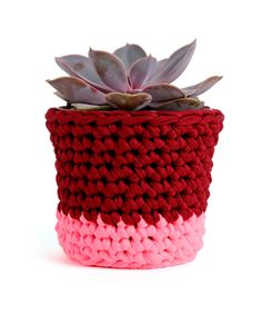 Clash Pots by Wool and The Gang #crochet #pot #homeware
