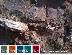 #unne#corporativo#transportes#cal#agregados#intermodal CORPORATIVO UNNE te dice ¿cómo se clasifican  los  minerales?Los minerales relacionados por el dominio del mismo anión tienden a presentarse juntos en el mismo lugar o en yacimientos geológicos semejantes; por ejemplo, los sulfuros generalmente se presentan en asociaciones próximas a depósitos del tipo de vetas o reemplazamiento, mientras que los silicatos forman la mayor parte de las rocas de la corteza terrestre…