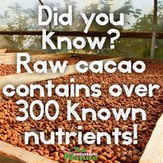 With over 300 identified nutrients and over 30 times more antioxidants than green tea, cacao surely is a super food!