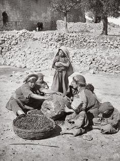 Crushing olives