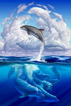 grande × - Delphine - Home Orcas, Water Animals, Animals And Pets, Beautiful Creatures, Animals Beautiful, Dolphin Art, Dolphin Painting, Painting Art, Wale