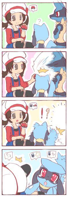 Where Did He Go? (Pokémon) AWWWW look at riolu freak out