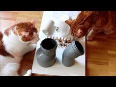 ▶ Flix, Leo und das Fummelbrett - YouTube