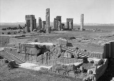 """neo-catharsis: """" Palace of Xerxes, Persepolis, Iran, 1930 """""""