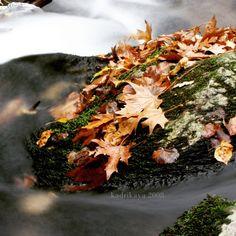 #çanakkale #bayramiç #evciler #ayazma 2008 #kazdağı #mountain #mountida #skamender #karamenderes #orman #stream #backpacking #camping #longexposure #water #bigayarimadasi #nature