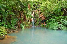 Azzorre: un giardino tropicale in mezzo all'Oceano Atlantico