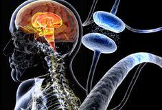 Fisioterapia: Entenda a diferença entre parkinson e parkinsonismo