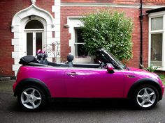 Pink-Mini