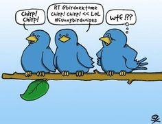 Tweet. Tweet.