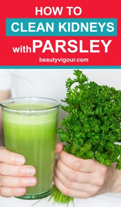 Kidney Cleanse Detox How To Clean Kidneys With Parsley - The human kidneys are organs that are of vital importance to the body. And they are responsible for filtering the Calendula Benefits, Matcha Benefits, Coconut Health Benefits, Herbal Remedies, Health Remedies, Natural Remedies, Healthy Herbs, Healthy Tips, Healthy Treats