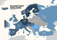 Male body height across Europe