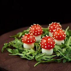 Forrest Mushrooms