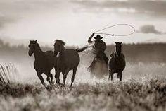Risultati immagini per western photography