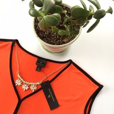 Listing! HP!✨Tangerine with black trim blouse New with tags...originally $30. Stretchy material with flattering neckline. Tangerine tango coloring... size Large. Bust 21 inches. Length 24 in front and 25 1/2 inches in back. Worthington Tops Blouses