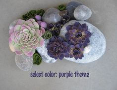succulent felt plants soft rock sculpture custom color themes to choose from
