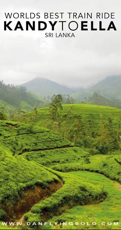 The most beautiful train journey in Sri Lanka - The Kandy to Ella train