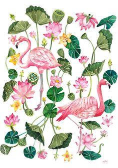 Aitch   Illustrators   Central Illustration Agency