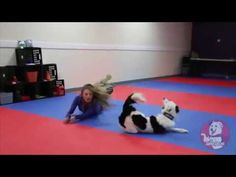 I'Ve Got Faith ~ Canine Freestyle Routine : Video Clips From The Coolest One