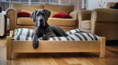 Who really wants to sleep on the floor? This raised dog bed would definitely give your dog a really comfortable place to rest and relax.