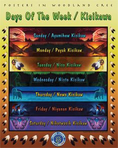 cree language poster   woodland cree posters add native language posters to your lesson plan ... Native American Lessons, Native American Photos, Native American Women, Aboriginal Language, Aboriginal Education, Aboriginal Art, American Indian Quotes, Indigenous Peoples Day, Art And Hobby