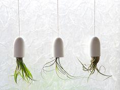Blogger Tempest van Ellemennopee wilde graag planten in haar badkamer, die van zichzelf nog kaal was.