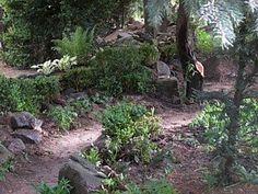 schattengärten - Google-Suche