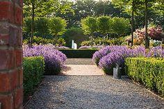 Arne Maynard Garden
